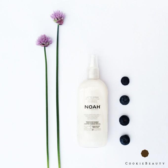 noah-spray