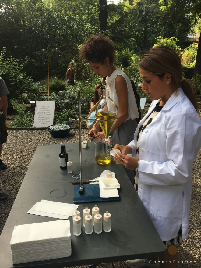 bottegaverde-olivo14